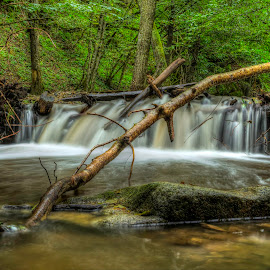 Small waterfall by Siniša Biljan - Nature Up Close Water