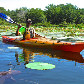 Kayaking In Water Lilies by Kathy Suttles - Sports & Fitness Other Sports ( kayaker, water lilly, woman, lake, kayak )