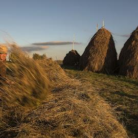 Hay close by Grigore Roibu - People Portraits of Men ( work, fork, haystack, portrait, rural, farm, fence, padureni, village, sunset, hay, man, animal )