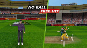 Screenshot of World Cricket Championship  Lt
