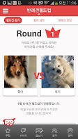 Screenshot of 반려동물 필수앱-페프(PEF, 강아지, 진료, 쇼핑)