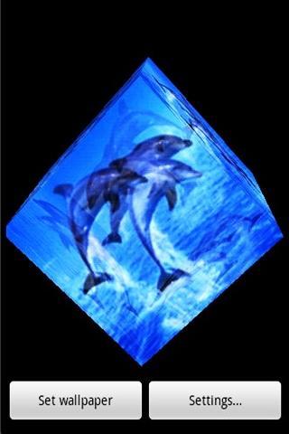 3D海豚010