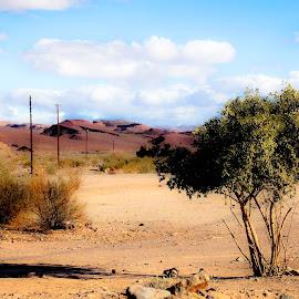 Namibia Border by Tom Parkin - Landscapes Deserts