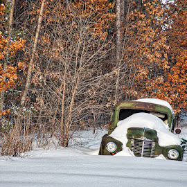 Old truck on Hwy 73 by Teri Woods-Bertin - Transportation Automobiles