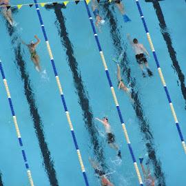 Swim by Bill Telkamp - Novices Only Sports