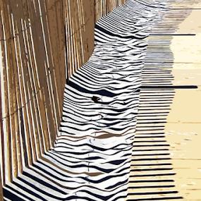 Fence Shadows at Mayflower Beach by Rita Colantonio - Digital Art Things ( abstract, fence, linear pattern, shadows )