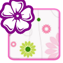 KB SKIN - Flower Beauty icon