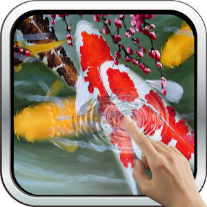 Download interactive koi fish 3d apk on pc download for Koi fish games