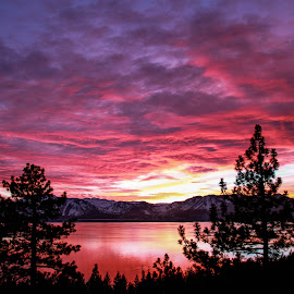 Colorful Night by Trevor Fairbank - Landscapes Cloud Formations ( clouds, sky, colorful, sunset, pine trees, sun, lake tahoe )