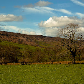 Farndale by Ron Jnr - Landscapes Mountains & Hills ( field, clouds, hills, blue sky, grass, trees, fields )