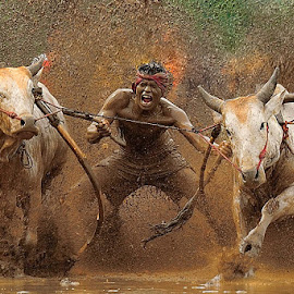 the race by Dadan Ramdani - Sports & Fitness Rodeo/Bull Riding ( color, colors, landscape, portrait, object, filter forge, Emotion, human, people, Travel, People, Lifestyle, Culture )