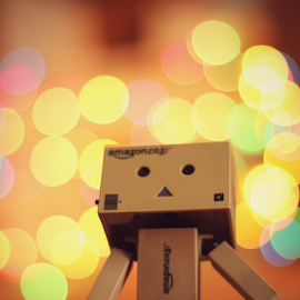 Danbo vs boookeh 2 by Hasnain Rizvi - Artistic Objects Toys ( danbo, bookeh, danboard,  )