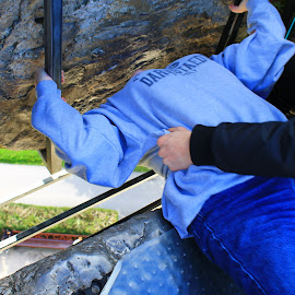 Kissing the Blarney Stone by Sandy Darnstaedt - Buildings & Architecture Public & Historical