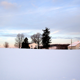 Winter on the Farm by Jane Spencer - Landscapes Weather ( farm, winter, snow, pennsylvania, homestead )