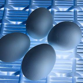 Eggs  by Jim Westcott - Food & Drink Ingredients ( food, food shots, food photography )