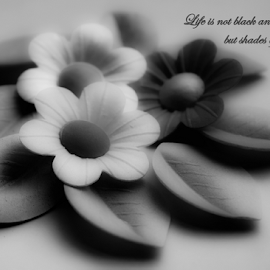 LIfe by Suzana Trifkovic - Typography Quotes & Sentences ( saying, life, black and white, decoration, quote, grey, flowers )
