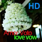 Amor Voto icon