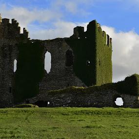 Castle by Jozef Svintek - Buildings & Architecture Public & Historical ( castle grass clouds rocks green ireland,  )