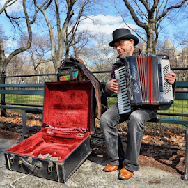 Musician in Central Park by Ferdinand Ludo - People Musicians & Entertainers ( new york, central park, playing the accordion,  )