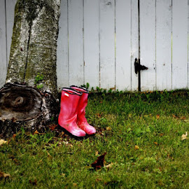 A Day in Her Shoes by Shannon Leigh - Novices Only Objects & Still Life ( shoes, isolated, tree, fascinating, thought, pink, lonely, boots )