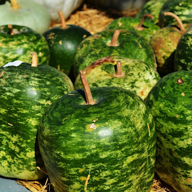 Gourds by Carrie Cooper - Nature Up Close Gardens & Produce ( gourd, farmers market, nature, 3d )