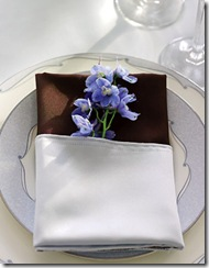 005_primary.brides napkin