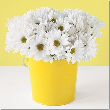 yellow bucket and daisies