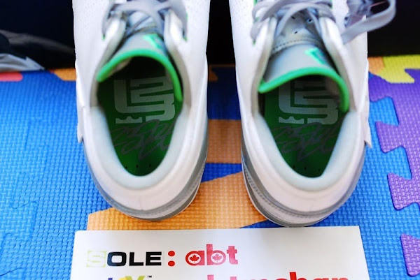 Dunkman Zoom LeBron V Low is Available at House of Hoops