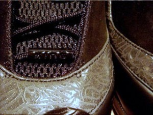 Redesigned Nike Zoom LeBron VI Sample aka Zoom Power