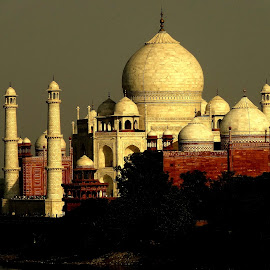 The Taj Mahal by Kaushik Mondal - Novices Only Objects & Still Life ( love, monuments, symbol, marvel, taj mahal, white, buildings, historical, architecture, stones, mughal,  )