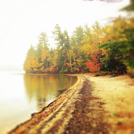 BuddyRoe Beach by Chris Winner - Instagram & Mobile iPhone ( #buddyroe #beach #fall #autumn )