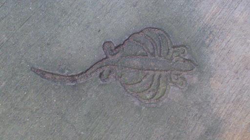 Flying Lizard in Concrete