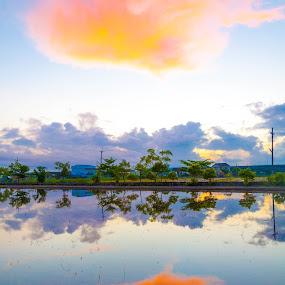 Morning light by Jay Chen - Landscapes Sunsets & Sunrises ( dayspring, dawn, cloud, sunrise, sunlight, daybreak, morning )