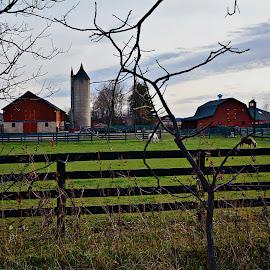 country farm by Jon Radtke - Landscapes Prairies, Meadows & Fields ( country farm )