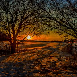 Twin Brooks Neighborhood Park by Joseph Law - City,  Street & Park  City Parks ( winter, twin brooks, snow, neighborhood, trees, sunshine, footprint, edmonton, city park, shadows )