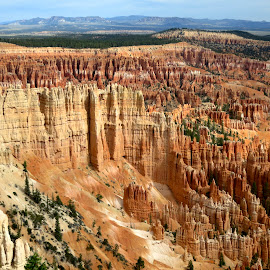 Bryce Canyon by Tyrell Heaton - Landscapes Caves & Formations