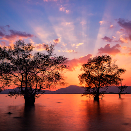 by Charliemagne Unggay - Landscapes Sunsets & Sunrises ( , blue, orange. color )