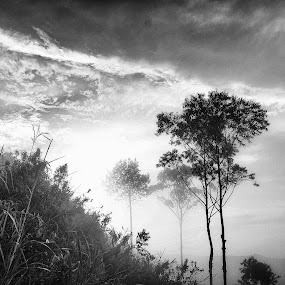 by Dwi Nurcahyo - Black & White Landscapes