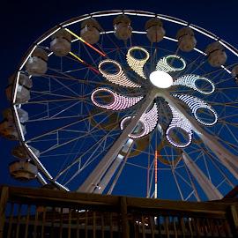 Ferris Wheel  by Jamie Cournoyer - City,  Street & Park  Amusement Parks ( hershey park, ferris wheel )