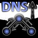 DNS Query Info icon