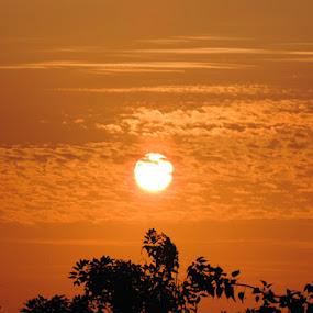 sunset by Neha Shah  - Landscapes Sunsets & Sunrises