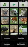 Screenshot of Listen to Animal Sounds - Free