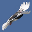 Fleeing Birds icon