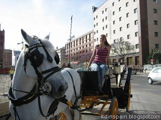 Seville 107