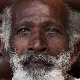 White beard by Mike O'Connor - People Street & Candids ( white, beard, trivandrum, india, man )