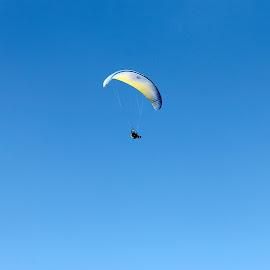 Free by Zoran Dojcinov - Transportation Other ( paraglider flying man sky )