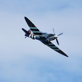 Spitfire Mark I by Tim Clifton - Transportation Airplanes