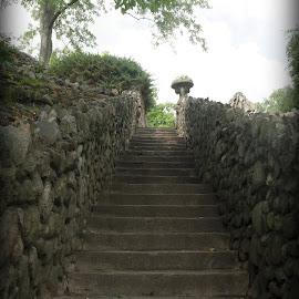 Battell Park, Mishawaka, IN by Lori Rider - City,  Street & Park  City Parks ( indiana, stairway, park, stone, steps, rocks )