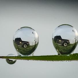 your car...  jeep by Kawan Santoso - Nature Up Close Natural Waterdrops