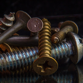 A pile of screws by Darleen Stry - Artistic Objects Industrial Objects ( wood, screws, brass, nails, steel )